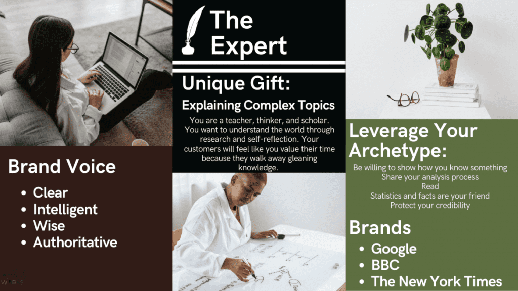 Infographic of The Expert Archetype