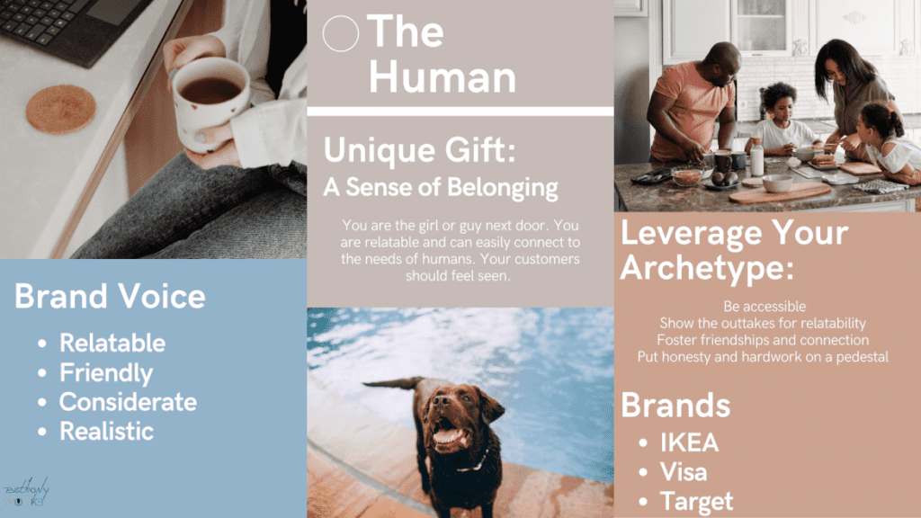 Infographic of The Human Archetype